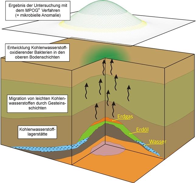 Von der Entdeckung einer Lagerstätte bis zur Förderung des ersten Erdgases können einige Jahre vergehen. Währenddessen erforscht ein Experten-Team alle unterirdischen Gegebenheiten und plant das Projekt bis ins kleinste Detail.